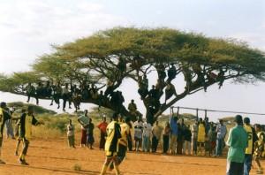 Bleacher seats: Somali Style